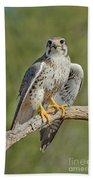 Praire Falcon On Dead Branch Bath Towel
