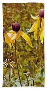Prairie Coneflowers In Pipestone National Monument-minnesota  Bath Towel