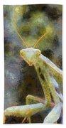 Praying Mantis Bath Towel