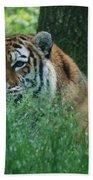 Predator In The Grass Bath Towel