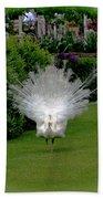 Pretty As A Peacock Bath Sheet