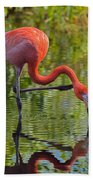Pretty Flamingo Bath Towel