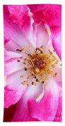 Pretty In Pink Rose Close Up Bath Towel