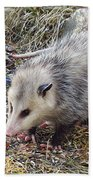 Pretty Possum Bath Towel
