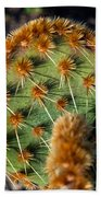 Prickly Cactus Leaf Green Brown Plant Fine Art Photography Print  Bath Towel
