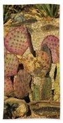 Prickly Pear Cactus Dsc08545 Bath Towel
