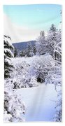 Pristine Winter Trail Bath Towel