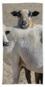 Professional Sheep Bath Towel