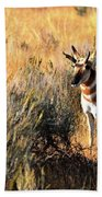 Pronghorn Buck Bath Towel
