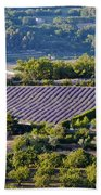 Provence Farmland Bath Towel