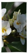 Pua Melia Na Puakea Onaona Tropical Plumeria Bath Towel