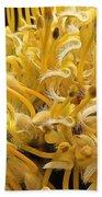 Wild Hairs Pua'ala Protea Bath Towel