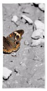 Puddling Butterfly 8766 Bath Towel