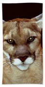 Puma Bath Towel