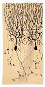 Purkinje Cells By Cajal 1899 Bath Towel