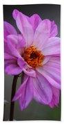 Purple Daisy Hand Towel