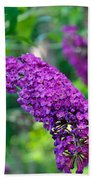 Butterfly Bush Garden Flower Bath Towel
