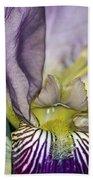 Purple Iris - Macro Bath Towel