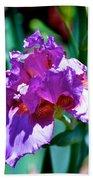 Purple Iris Opens Bath Towel
