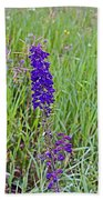 Purple Larkspur In A Meadow In Yellowstone National Park-wyoming Bath Towel