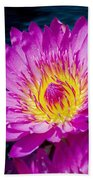 Purple Lily On The Water Bath Towel