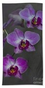 Purple Orchid Flower Hand Towel