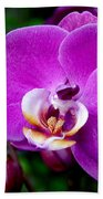 Purple Orchid Bath Towel