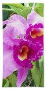 Purple Cattleya Orchids Bath Towel