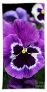 Purple Pansy Close Up Hand Towel