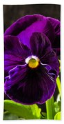 Purple Pansy Bath Towel
