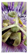 Purple Passion Flower Close Up  Bath Towel