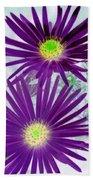 Purple Passion - Photopower 1604 Bath Towel