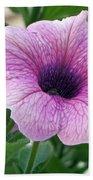 Purple Petunia  Bath Towel