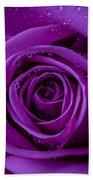 Purple Rose Close Up Bath Towel