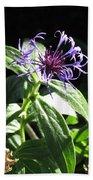 Purple Wildflower Bath Towel