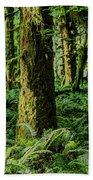 Quinault Rainforest Bath Towel