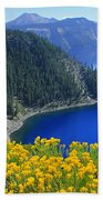 D2m5622-rabbit Brush At Crater Lake Bath Towel