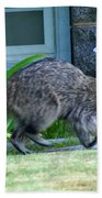 Raccoon In Flight Bath Towel