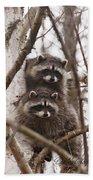 Raccoon Siblings Bath Towel
