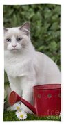 Ragdoll Cat Bath Towel