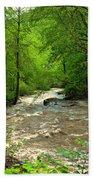 Raging Waters - West Virginia Backroad Bath Towel