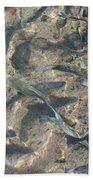 Rainbow Trout Art Prints Canvas Framed Bath Towel