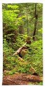 Rainforest Green Everywhere Bath Towel