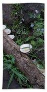 Rainforest Vegetation Moss And Fungi Bath Towel