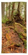 Recycling In The Cheakamus Rainforest Bath Towel