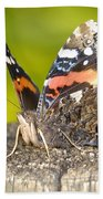 Red Admiral Butterfly Bath Towel