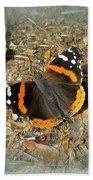 Red Admiral Butterfly - Vanessa Atalanta Bath Towel