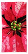 Red And White Poinsettia Bath Towel