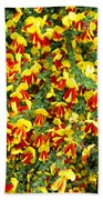 Red And Yellow Bath Towel