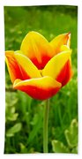 Red And Yellow Tulip Bath Towel